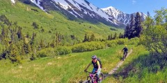Alaska Trail Guides