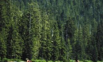 Alaska Backcountry Jeep 3 ATA Ketchikan 2012