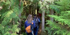 Rainforest Trail Bike and Hike Adventure