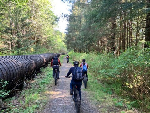 Enjoy a 5-mile pedal on an old mill road through the rainforest