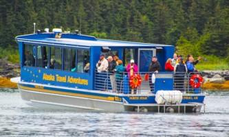 Whale watching adventure Whale tour Alaska Travel Adventures
