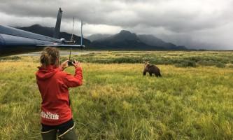 Bear viewing IMG 51762019