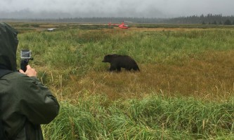 Alaska ultimate safaris helicopter flightseeing IMG 2966 22019