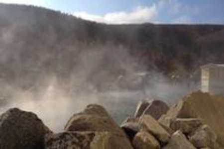 Alaska Wildlife Guide: Chena Hot Springs Day Tour with Ice Museum