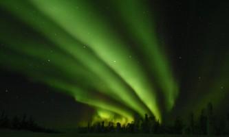Alaska Wildlife Guide Chena Hot Springs Northern Lights tours 20190301 091710070 i OS2019