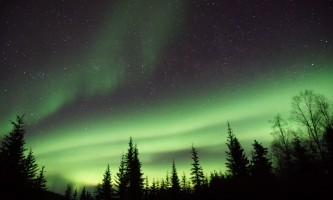 Alaska Wildlife Guide Chena Hot Springs Northern Lights tours 20190404 235147675 i OS2019