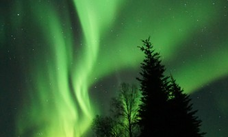 Alaska Wildlife Guide Chena Hot Springs Northern Lights tours 20190404 235151232 i OS 12019