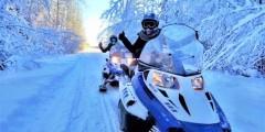 Alaska Wildlife Guide: Snowmobiling in Alaska