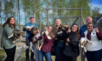 Liz Failor Group with puppies alaska alaskan husky adventures
