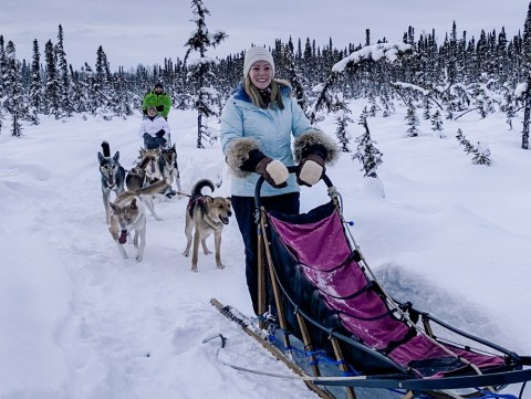 Winter tours give you the choice to ride in the sled, or mush your own!