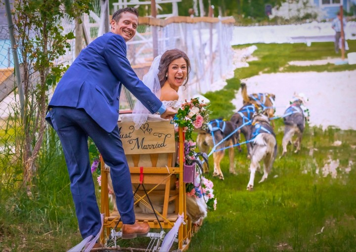 Dog sled down the aisle with Alaskan Husky Adventures just north of Anchorage