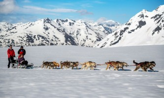 Alpine air dog sledding Alpine Air Dog Sledding on Fourth of July Glacier PC Taylor Hutchins2019