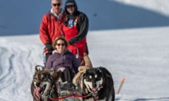 Alpine air dog sledding Alpine Air Dog Sledding Seward PC Taylor Hutchins2019