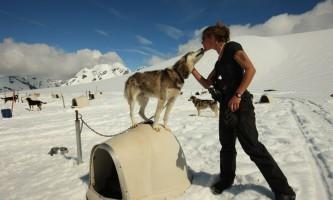 Alpine air alaska girdwood glacier dogsledding0606 AS 2684 TA