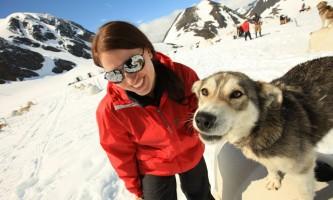 Alpine air alaska girdwood glacier dogsledding0606 AS 2720 TA