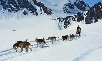 Alpine air alaska girdwood glacier dogsledding DSC 0585