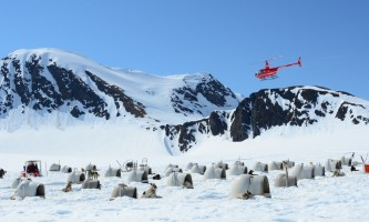 Alpine air alaska girdwood glacier dogsledding Alpine Air Alaska Summer Glacier Dog Sledding Scenic Flight