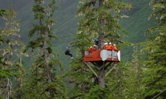 Alaska alpine zipline adventures juneau DSCF3682 alaska zipline adventures