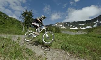Evans SIMG 6128 alaska hotel alyeska girdwood resort summer mountain biking hiking trails