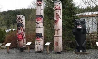 Alaska black bear wildlife exploration ketchikan Totem courtyard 2 rainforest sanctuary wildlife eagle center