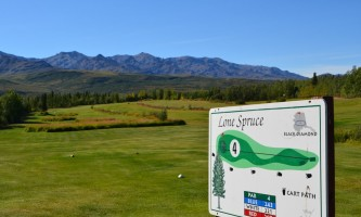2012 Golf 1532019