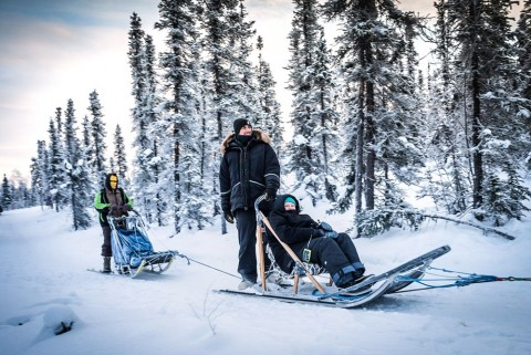 """Did you know all dog mushers use engine-equipped vehicles for training their dogs during the """"no-snow"""" times of year?"""