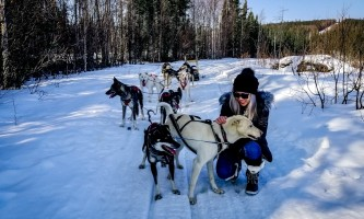 1206 2019 083044870470141051655 alaska borealis basecamp fairbanks