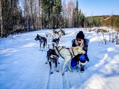 Take advantage of the camp's other winter activities; snowshoeing, dog sledding, snowmobiling, fat tire biking, and tours to the Arctic Circle.