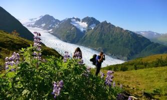 Comet Heli H Ike Comet Glacier Lupine Alpine Heli Hiking2019