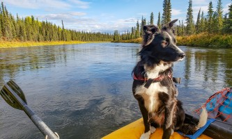 Copper River Guides Rafting 2021 Brandon Thompson 20180904 175350