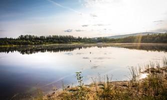 Fairbanks fountainhead wedgewood wildlife sanctuary WW SANC Alaska Org Listing 0015 7 3119 Fnthd Sanctuary 025