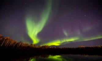 Fairbanks fountainhead wedgewood wildlife sanctuary WW SANC Alaska Org Listing 0016 9 23 19 Wedgewood Aurora 52
