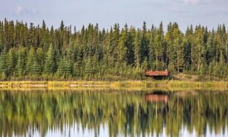 Fairbanks fountainhead wedgewood wildlife sanctuary WW SANC Alaska Org Listing 0012 7 3119 Fnthd Sanctuary 073