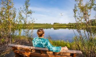Fairbanks fountainhead wedgewood wildlife sanctuary WW SANC Alaska Org Listing 0010 7 3119 Fnthd Sanctuary 115