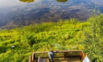 Fairbanks fountainhead wedgewood wildlife sanctuary WW SANC Alaska Org Listing 0007 7 3119 Fnthd Aerials 28