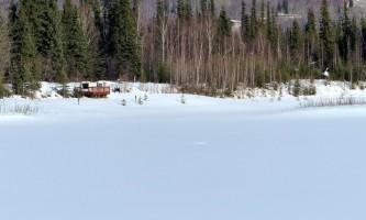 Fairbanks fountainhead wedgewood wildlife sanctuary WW SANC Alaska Org Listing 0001 Levels 1