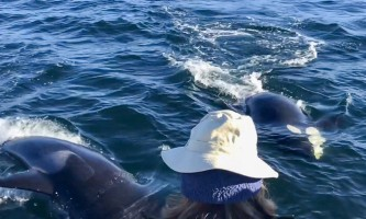 Glacier Wind Charters twin cow orca under boat