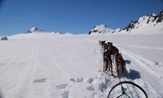 Great alaska adventure bucket list trip Nora 1st person dog sledding