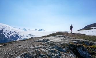 Exit glacier guides nature hike 2