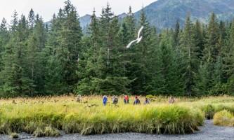 Alaska Tonsina0012 tonsina creek kayaking trip