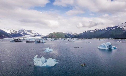 Paddle around massive icebergs that have calved from Bear Glacier on a half or full day trip.