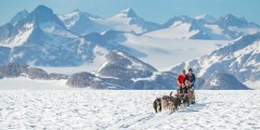 NorthStar Trekking Glacier Dog Sled Adventure