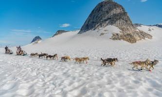 Northstar trekking glacier dog sled adventure 20190627 Northstar 1049 Edit