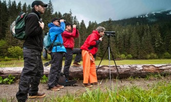 Pack Creek Bear Tours Pack Creek Outfitters2019