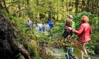 Rainforest sanctuary wildlife eagle center IMG 1200