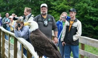 Rainforest sanctuary wildlife eagle center Rainforest Sanctuary 4