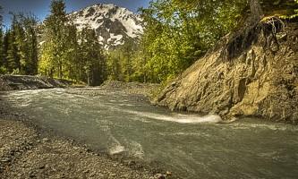 Seaveys ididarod Alaska Channel 6