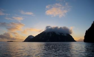 Seward ocean excursions 20