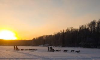 Snowhook adventure guides of alaska dog sledding tours PSX 20190103 163831