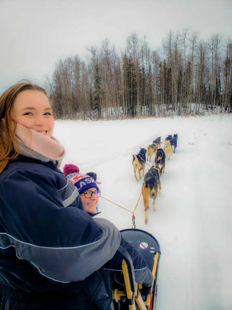 Two visitors try out driving a team of sled dogs through the snow.